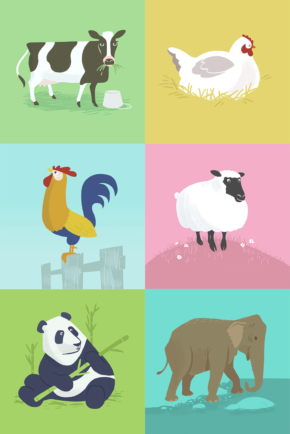 Animals_Illustration